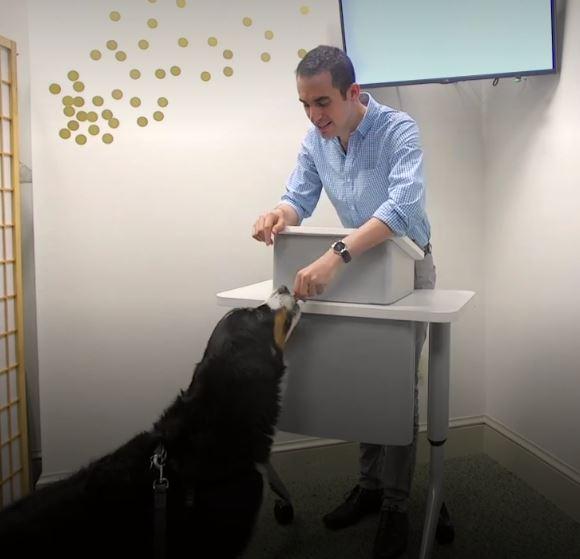 Dog is speaker's best friend when you practice your speech